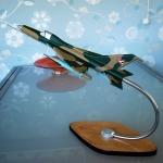 Handmade Model MiG21 (1)
