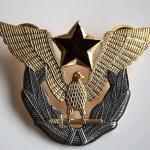 Pin Yugoslavia (1)
