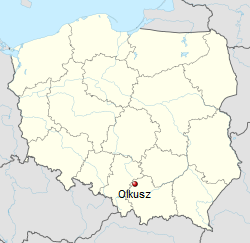 Screenshot_2019-06-21 Olkusz - Wikipedia
